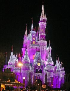 Purple Disney Castle