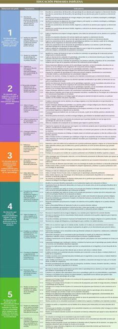 Perfil, Parámetros e indicadores Educación Primaria Indigena