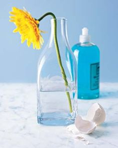 GLASSWARE - Eggshells as Bottle and Vase Cleaners - Use broken eggshells to clean the hard-to-reach places in bottles and vases. Drop some crushed shells in the bottle, add warm water and a drop of dishwashing liquid, and give it a good swirl. The shells will scrape off the gunk you can't get to.