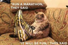 Marathons...