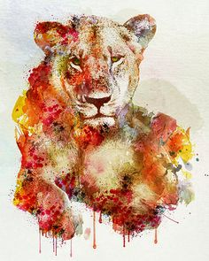 Hey, I found this really awesome Etsy listing at https://www.etsy.com/listing/172759322/resting-lioness-in-watercolor