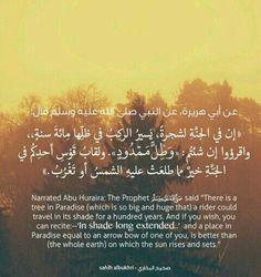 اللهم ارزقنا الجنة ❤