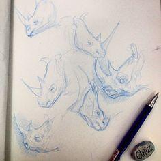 Sketches • rhino • ✏️• #sketch #rabisco #cafedamanha #morning #rhino #sketchbook #molesquine #rinoceronte #watercolor #art #arte #desenho #draw #study