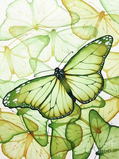 Green Butterfly - art of Christina Meeusen Green Butterfly, Butterfly Pattern, Butterfly Art, Butterfly Kisses, Butterfly Chair, Art Papillon, Art Watercolor, Butterfly Painting, Butterfly Watercolor