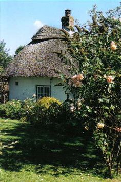 Beautiful thatched cottage in The New Forest, Hampshire, UK