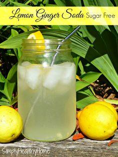 Lemon Ginger Soda :Sugar Free: - Simply Healthy Home Thm Recipes, Real Food Recipes, Oats Recipes, Rice Recipes, Chicken Recipes, Vitamix Recipes, Diabetic Recipes, Healthy Recipes, Recipes