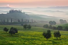 tuscany, red wine here i come