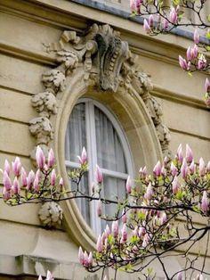 Paris in the spring... | Live Internet    ᘡղbᘠ