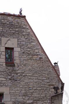 Dijon, Maison Millière  La Chouette et le Chat http://cours-formation.photo