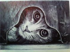 Continuando la serie de animales, esta foto me resultó divertida, y me encantan los gatos! All drawings are mine. Todos los dibujos son mios.