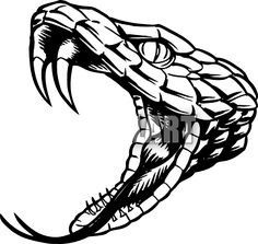 Snake Head Clip Art Clipart