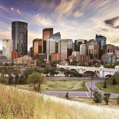Have you heard of what @because_calgary is up to? They're seeking out the best, brightest, and most interesting shots of Calgary. Tag your fave spots from in and around the #YYC community and celebrate our city with #BecauseCalgary! #yycliving #yycre #yycnow #yycbuzz #yyctoday #loveit #calgary #community #getinvolved #yourcity #yyclove #instalike #BrookfieldYYC