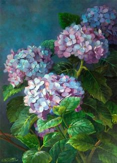 Flowers In Vase Painting, Hydrangea Painting, Watercolor Flowers, Watercolor Artists, Watercolor Painting, Art Floral, Oil Painting For Sale, Paintings For Sale, Painting Art