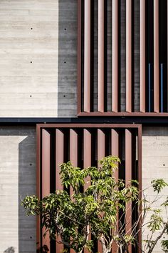 Afeka House von Bar Orian Architects in Tel Aviv, Israel - Dekoration De Wood Facade, Concrete Facade, Concrete Houses, Design Exterior, Facade Design, House Design, Louvre Windows, Wood Architecture, Ancient Architecture
