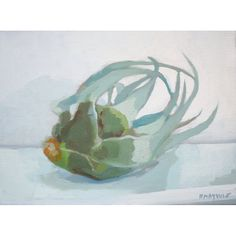 9x12 oil on canvas painting  Airplant 1 by ElizabethMayville, $210.00