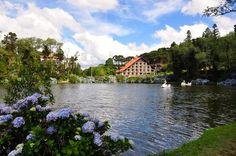 Reserve um hotel em Gramado. É só clicar na foto para encontrar o seu!