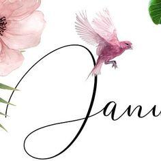 Purpose, Calendar, Sign, Website, Paper, Floral, Instagram, Florals, Flower