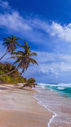La Digue, Seychelles | by Dmitry Laudin