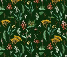 herbal_study_green fabric by holli_zollinger on Spoonflower - custom fabric
