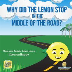 1000 images about all things lemon on pinterest for Lemon shaped lemonade stand