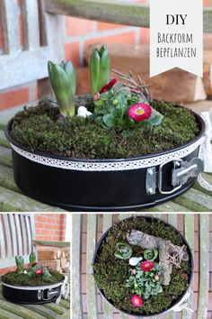 plant baking pan - Upcycling: Planting a baking pan is a quick spring decoration idea for the garden. Planting the cak -Upcycling: plant baking pan - Upcycling: Planting a baking pan is a quick spring decoration idea for the garden. Planting the cak - Décor Boho, Diy Garden Projects, Plantar, Potting Soil, Upcycled Crafts, Decoration Table, Spring Decorations, Garden Planters, Diy Planters