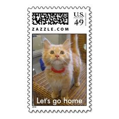 Let's go home cat postage stamps