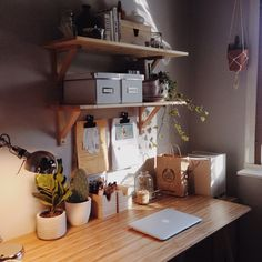 studysexcoffee:  diwia:  @ my work place where no work ever gets done  At least it's cute