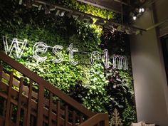 West Elm Living Wall