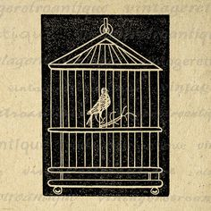 Birdcage with Bird Graphic Printable by VintageRetroAntique