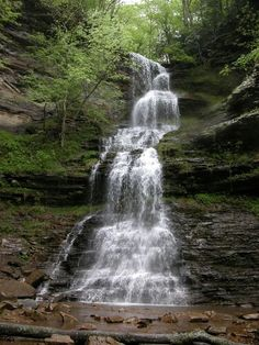 Cathedral Falls~Blackwater Falls State Park~WV