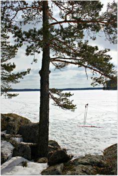 Hiihtoretki maaliskuun auringossa #skiing on the ice #winter #finland
