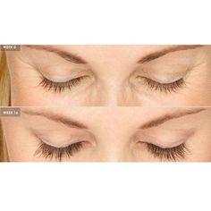 565c739da14 Inspire Uplift Natural Eyelash & Eyebrow Grow Serum Natural Eyelash &  Eyebrow Growth Serum | Pamper Me in 2019 | Eyebrow growth serum, Eyebrow  growth, ...