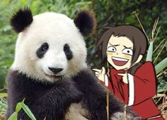 I laughed too hard. Get it? Its chine. With a panda. Cause China loves panda's :D Plus his face is perfect...