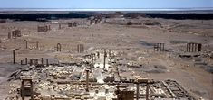 The Legacy of Ancient Palmyra (Getty Research Institute) Palmyra, Research Institute, City Photo, Modern, Trendy Tree
