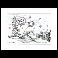 I imagined Covid-19 being like the notorious dandelion, going to seed and spreading on the breeze far and wide through sleepy unsuspecting communities. It takes vigilance to keep a neighbourhood's lawns dandelion free. This drawing is available to purchase right now at. #dandelion #gardening #coronavirusart #covid19art #drawing #yycartist