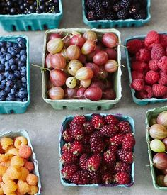 oh joy | flavor stories | summer berry tarts