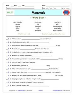 Differentiated Video Worksheet, Quiz & Ans. for Bill Nye - Sound ...