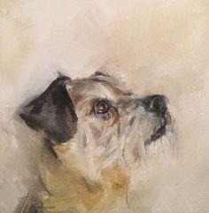 Boarder terrier oil on canvas Dog Illustration, Illustrations, Border Terrier, Dog Artwork, Animal Sketches, Watercolor Animals, Watercolor Portraits, Wildlife Art, Dog Portraits