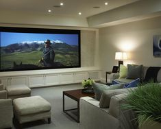Add rock and lights around this sort of an idea. Home Theatre And Media Design And Installation Design, Pictures, Remodel, Decor and Ideas