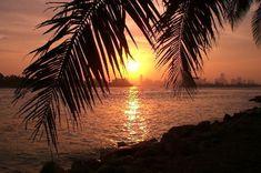 miami beach | Imagen de Miami Beach, FL