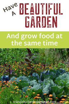 When you first start to grow food, it may seem a bit dull compared to growing only flowers. However you can still have a beautiful garden even with edible plants. Edible Plants, Edible Flowers, Natural Life, Natural Living, Backyard Layout, Stone Planters, Grow Food, Garden Design Plans, Garden Maintenance