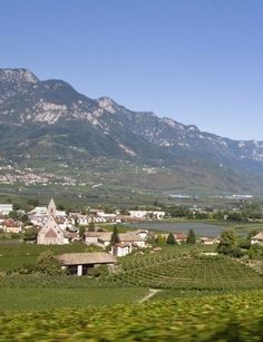We'll be highlighting wines from Trentino and the Alto Adige at our Oct. 12th Wine Dinner!