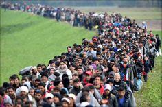 Deportazione assistita.