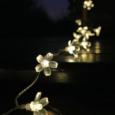 Amazon.com : Lycheers 5m 50 Led Blossom Solar Fairy Lights for Gardens, Homes, Christmas, Partys, Weddings (Warm White) : Outdoor Lightstrin...