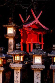 Kasuga Taisha Shrine---3000 lanterns lit for Lantern Festival, Nara, Japan