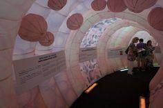 Der begehbare Darm war der Hingucker des Events, das vom Krebsinstitut Gustave Roussy ins Leben gerufen und von der Agentur Carré final organisiert wurde. Bilderrechte: © Carré final / A. Sinot