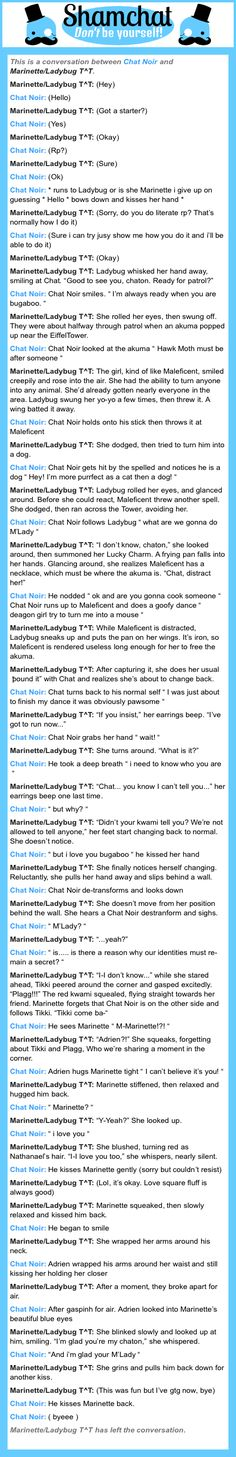 A conversation between Marinette/Ladybug T^T and Chat Noir