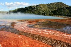 The most beautiful and diverse place I have been to....Yellowstone National Park