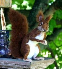 New OOAK Needle felted Life Size Red squirrel Taxidermy by SteviT, $895.00