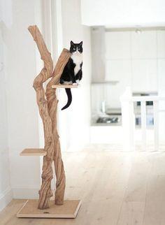 Maak van je huis een kattenparadijs! Op Woonblog vind je een heleboel leuke ideeën voor stylish verantwoorde kattenmeubels.